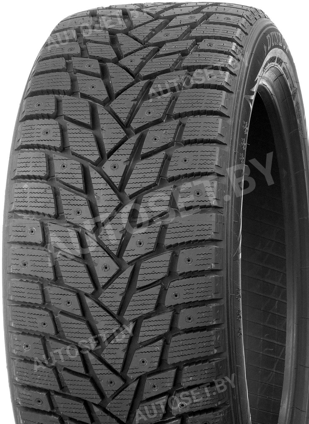 Зимняя шина DUNLOP SP Winter Ice02 – вид 2