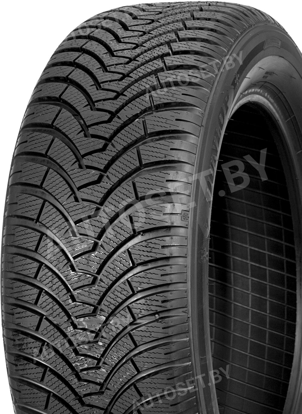 Зимняя шина DUNLOP SP Winter Sport 500 – вид 2